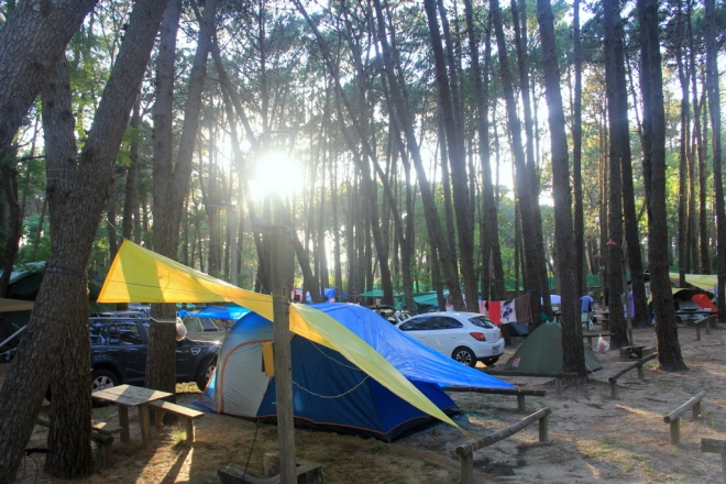 Camping San Rafael (2)