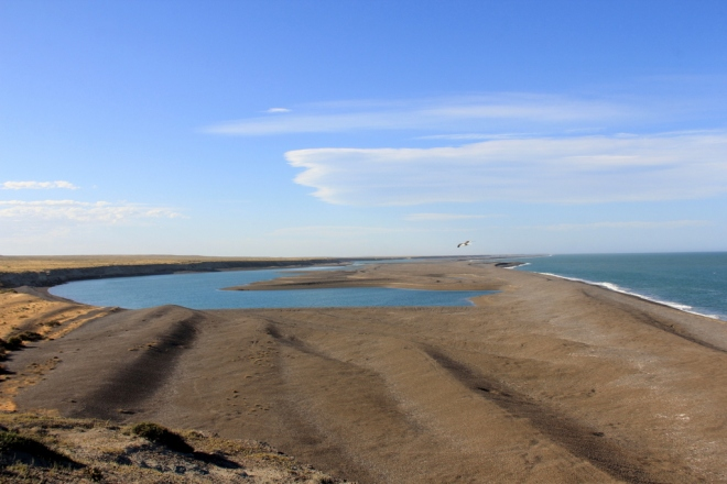Península Valdez (90)
