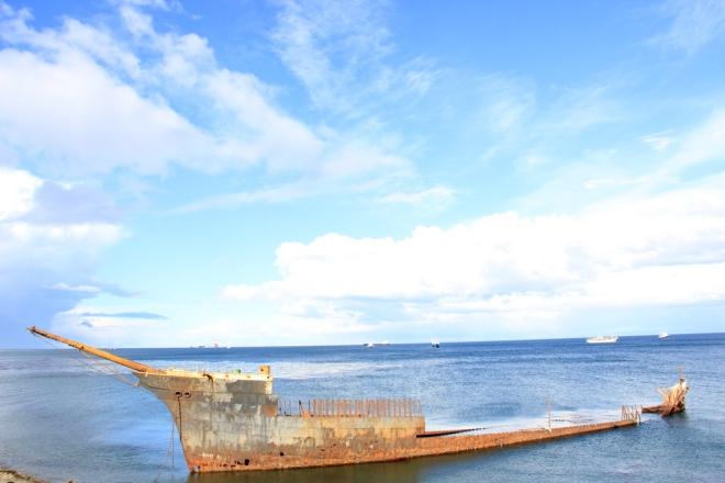 Punta Arenas (30)