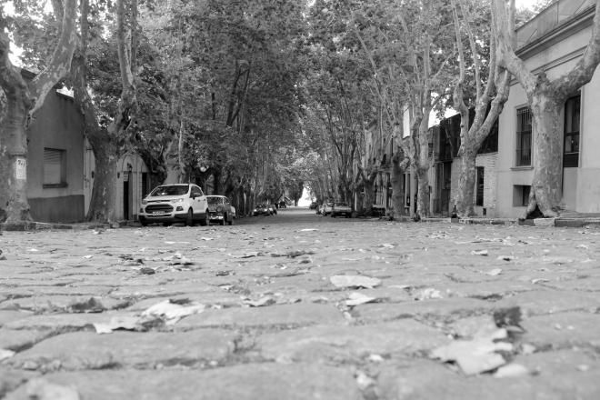 Ruas com estilo colonial, Colonia Del Sacramento