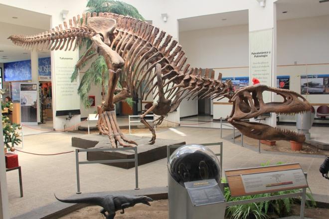 Tyrannotitan - 116 milhões de anos