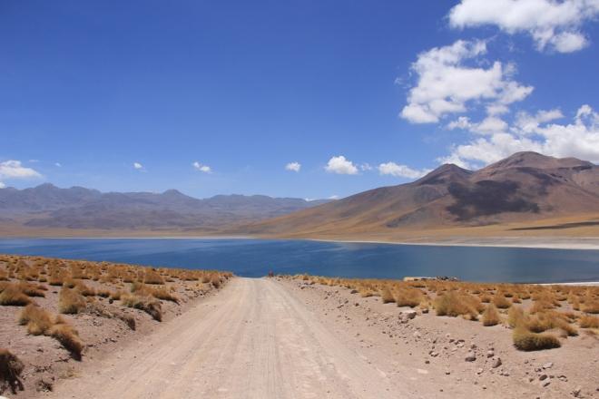 Deserto do Atacama (179)