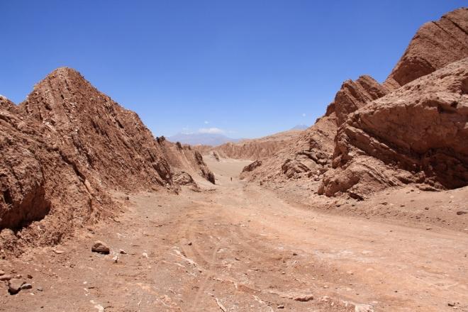 Deserto do Atacama (234)