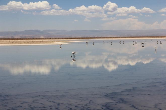 Deserto do Atacama (45)