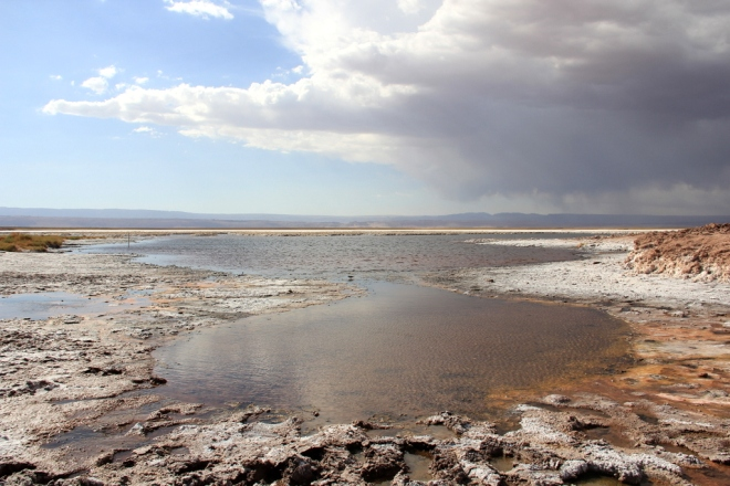 Deserto do Atacama (84)